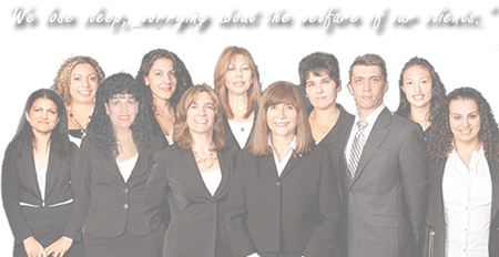 Immigration Attorneys at Svetlana Schreiber and Associates